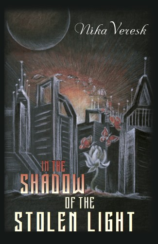 обложка книги In the shadow of the stolen light