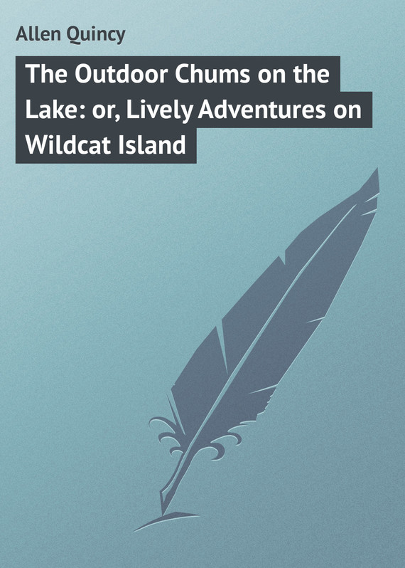 обложка книги The Outdoor Chums on the Lake: or, Lively Adventures on Wildcat Island