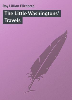 бесплатно читать книгу The Little Washingtons' Travels автора Lillian Roy